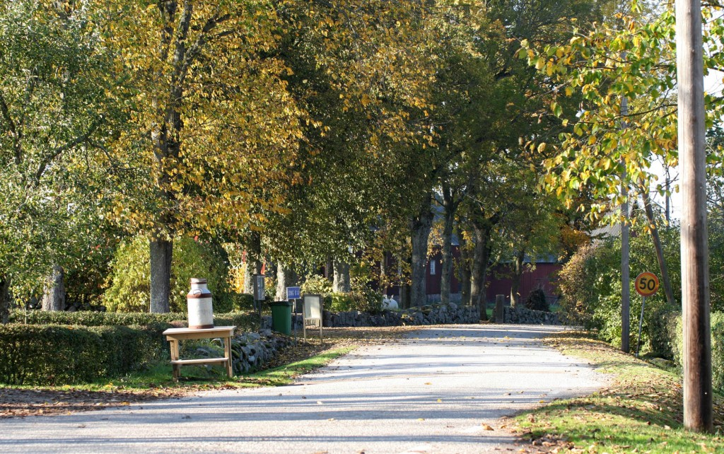 LH 20051013-6337 Norgevägen genom Longs by